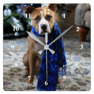 ピット・ブルの救助犬からの休日の応援 スクエア壁時計
