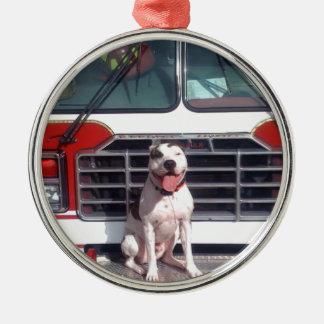 ピット・ブルのT骨の火の家犬 メタルオーナメント