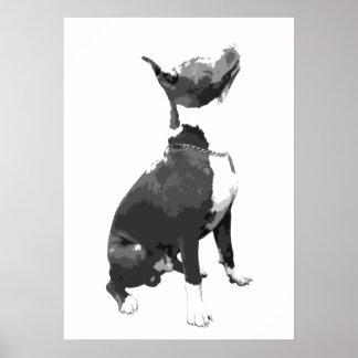 ピット・ブル粋な白黒犬 ポスター