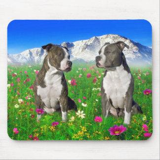 ピット・ブルBrindle及び青い(犬)スタッフォード及び犬 マウスパッド