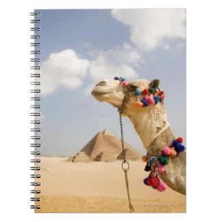 ピラミッドギーザ、エジプトを持つラクダ ノートブック