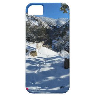 ピレネー山脈の道のiPhoneカバー iPhone SE/5/5s ケース