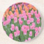 ピンクおよびオレンジチューリップの庭 飲み物用コースター