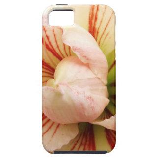 ピンクおよび白いアマリリスの花 iPhone SE/5/5s ケース