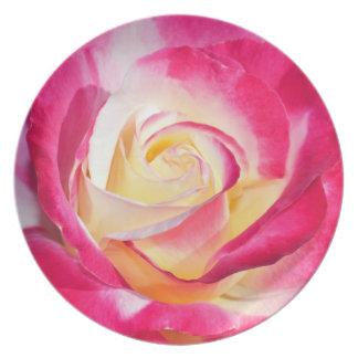 ピンクおよび白いバラのプリントのプレート プレート