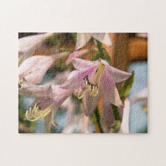 ピンクおよび白いHostAの花 ジグソーパズル