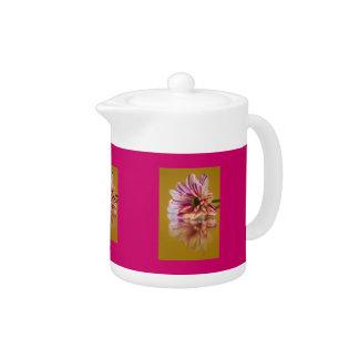 ピンクおよび白いStripeyのガーベラの花