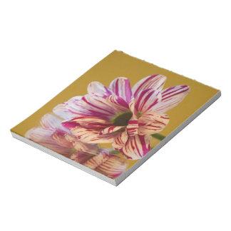 ピンクおよび白いStripeyのガーベラの花 ノートパッド