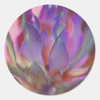 ピンクおよび紫色の燃えるようなプロテア ラウンドシール