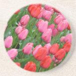 ピンクおよび赤い春のチューリップ ドリンク用コースター
