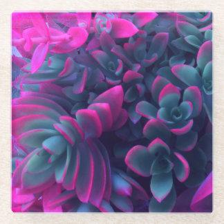 ピンクおよび青く水気が多い植物の写真撮影 ガラスコースター