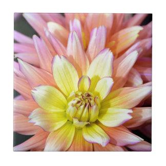 ピンクおよび黄色いダリアの花 タイル