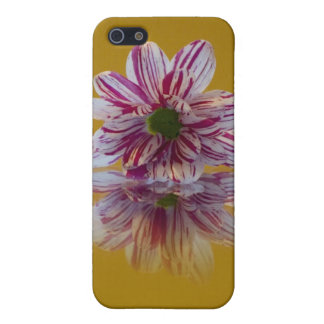 ピンクそして白くストライプのなデイジーのガーベラ iPhone SE/5/5sケース