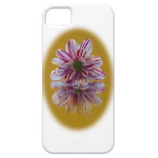 ピンクそして白くストライプのなデイジーのガーベラ iPhone SE/5/5s ケース