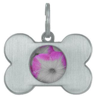 ピンクによって縁を付けられる白黒ペチュニア ペットネームタグ