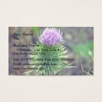 ピンクにスコットランドにアザミの開くこと 名刺