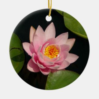 ピンクのはす《植物》スイレンの花 セラミックオーナメント