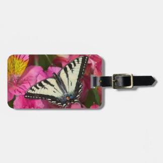 ピンクのアゲハチョウの蝶 ラゲッジタグ