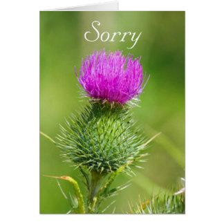 ピンクのアザミの花の残念な挨拶状 カード