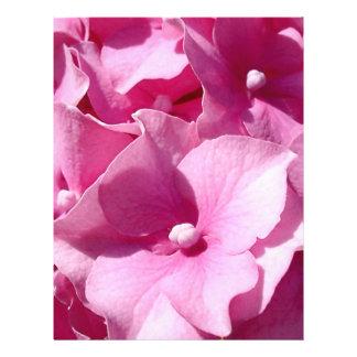 ピンクのアジサイのフライヤ チラシ