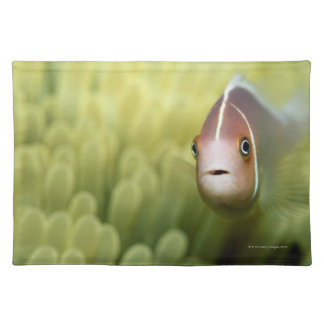 ピンクのアネモネ魚 ランチョンマット