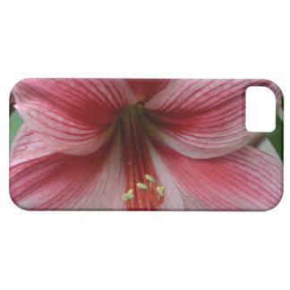 ピンクのアマリリス iPhone SE/5/5s ケース
