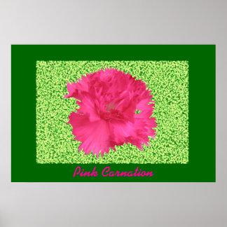 ピンクのカーネーションのプリント ポスター