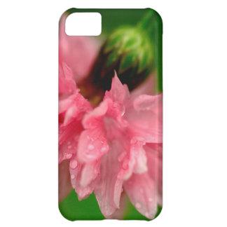 ピンクのカーネーション iPhone5Cケース
