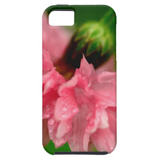 ピンクのカーネーション iPhone 5 カバー