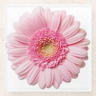 ピンクのガーベラのデイジーの花ガラスのコースター ガラスコースター