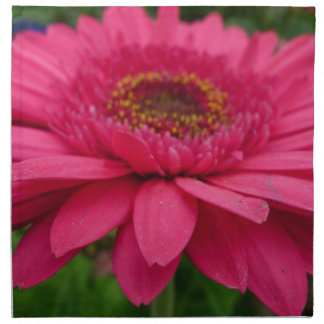 ピンクのガーベラ ナプキンクロス