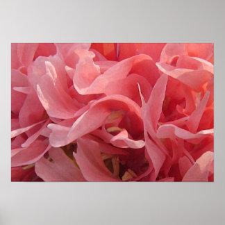 ピンクのケシの花びら ポスター