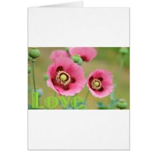 ピンクのケシ カード