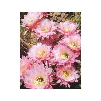 ピンクのサボテンの花のキャンバス キャンバスプリント