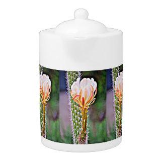 ピンクのサボテンの花の茶ポット