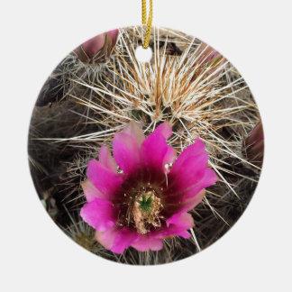 ピンクのサボテンの花 セラミックオーナメント
