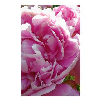 ピンクのシャクヤク 便箋