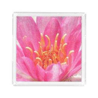 ピンクのスイレンのクローズアップの香水の皿 アクリルトレー