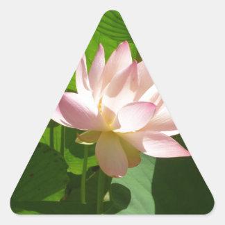 ピンクのスイレン 三角形シール