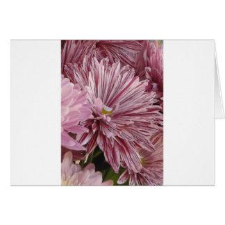 ピンクのストライプのな花 カード