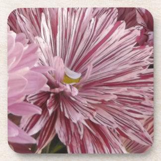 ピンクのストライプのな花 コースター
