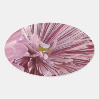 ピンクのストライプのな花 楕円形シール