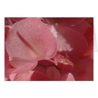 ピンクのゼラニウム: ほとんど無地のな淡いピンク カード