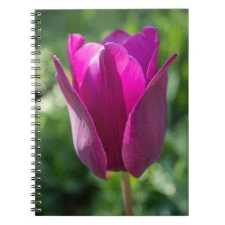 ピンクのチューリップのノート ノートブック