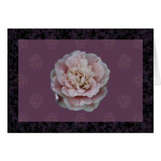 ピンクのツバキの挨拶状 カード
