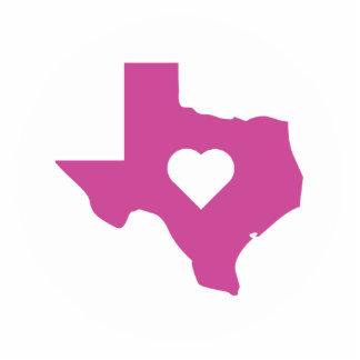 ピンクのテキサス州 フォトスカルプチャー