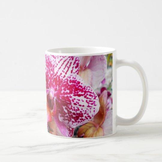 ピンクのデンドロビウムの蘭 コーヒーマグカップ