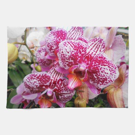 ピンクのデンドロビウムの蘭 ハンドタオル