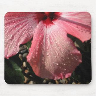 ピンクのハイビスカス水低下 マウスパッド