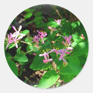 ピンクのハニーサックルの庭の花 ラウンドシール